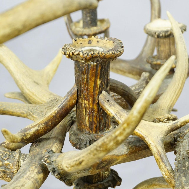 Antler Antique Black Forest Antler Candle Luster 1900 For Sale - Image 7 of 13