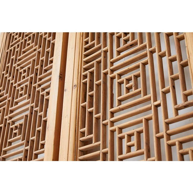 Pair of Chinese Carved Doors With Lattice Windows For Sale - Image 9 of 13