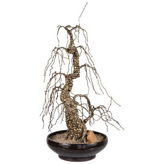 1950s Bronze Bonsai Tree Sculpture For Sale