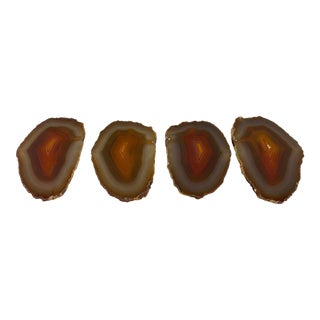 Vintage Set of Polished Agate Specimen Coasters, Set of 4 For Sale