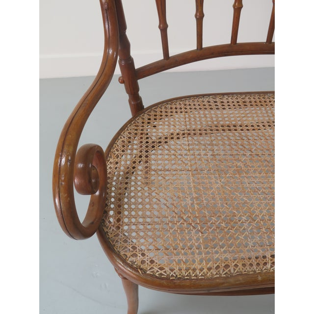 Bentwood Early 20th Century Thonet Style Bentwood and Caned Settee For Sale - Image 7 of 13