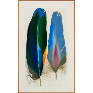 """Two Scarlet Macaw Feathers"" by Mary Jo McConnell (B.1935-) Mixed Media in Custom Oak Frame!~ For Sale"