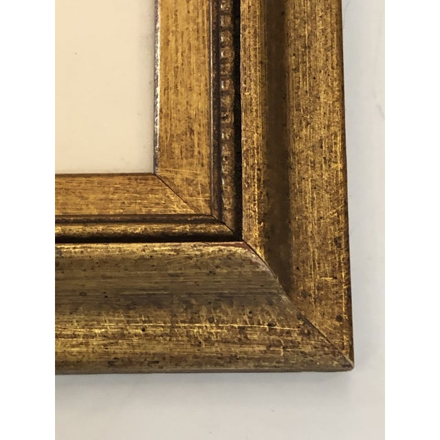 19th Century Pressed Organic Botanicals in Giltwood Frames -Set of 3 For Sale - Image 9 of 11