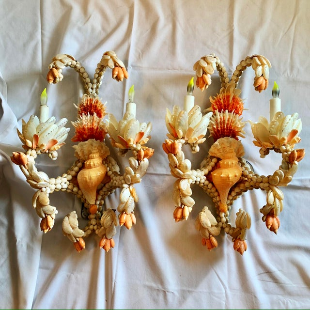 Large Shell Sconces - A Pair For Sale In West Palm - Image 6 of 7