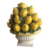 Image of 1950s Italian Ceramic Lemon Topiary For Sale