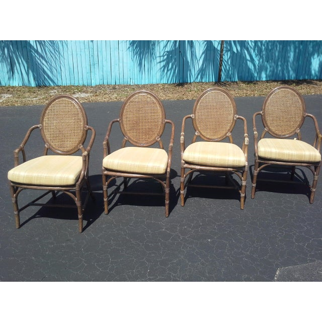 Brown McGuire Louis XVI Cane Seat Chairs - Set of 4 For Sale - Image 8 of 9