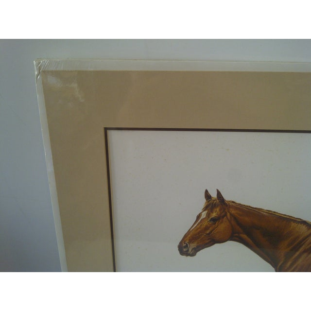 1978 Triple Crown Winner, Limited Edition Print For Sale - Image 7 of 8