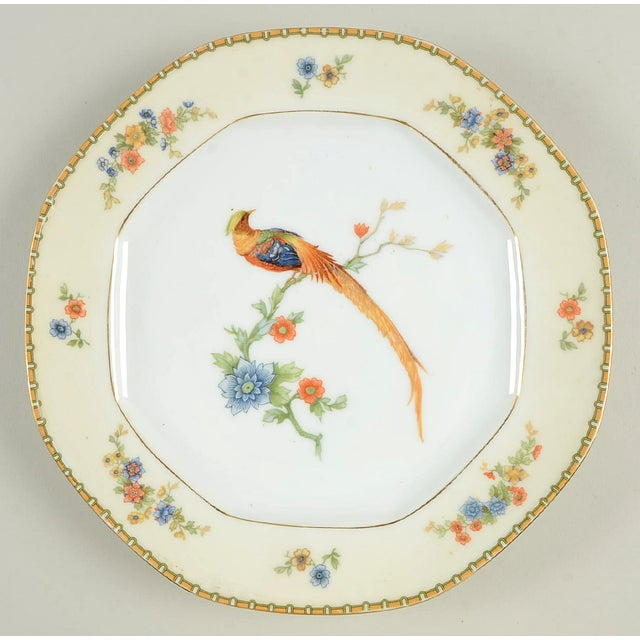 Early 20th Century Vintage Mixed Bird Dinner Plates - Set of 8 For Sale - Image 5 of 10