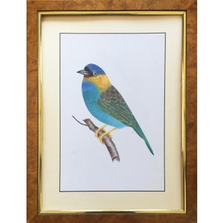 Original Vintage Bird Painting Oil Painting on Silk Burl Wood Frame For Sale