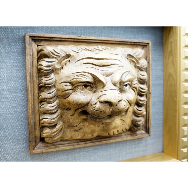 19th Century Framed Lion Head Fragment For Sale - Image 6 of 7
