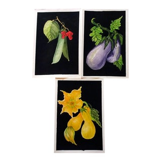 Lynne French Gallery Wall Garden Vegetable Paintings - Set of 3 For Sale