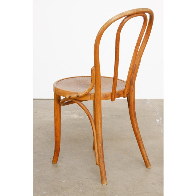 Tan Michael Thonet No. 18 Bentwood Viennese Cafe Chairs - a Pair For Sale - Image 8 of 13