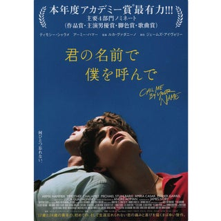 Call Me by Your Name 2017 Japanese B5 Chirashi Flyer For Sale