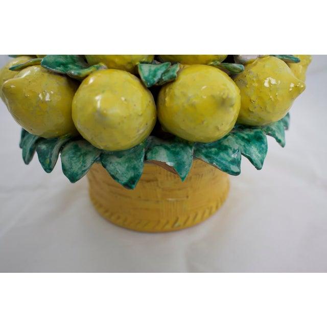 Italian Terracotta Lemon Topiary For Sale In Los Angeles - Image 6 of 9