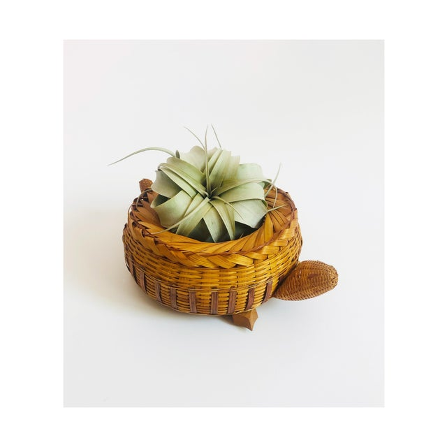 An adorable vintage wicker basket in the shape of a turtle. Sweet wood details and variation to the pattern of the weave.