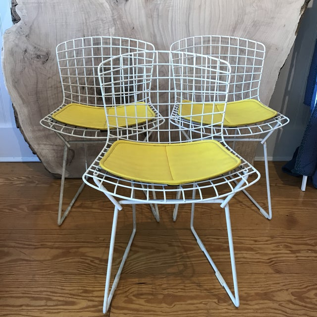 1950s Vintage Harry Bertoia Child's Chairs - Set of 3 For Sale - Image 11 of 11