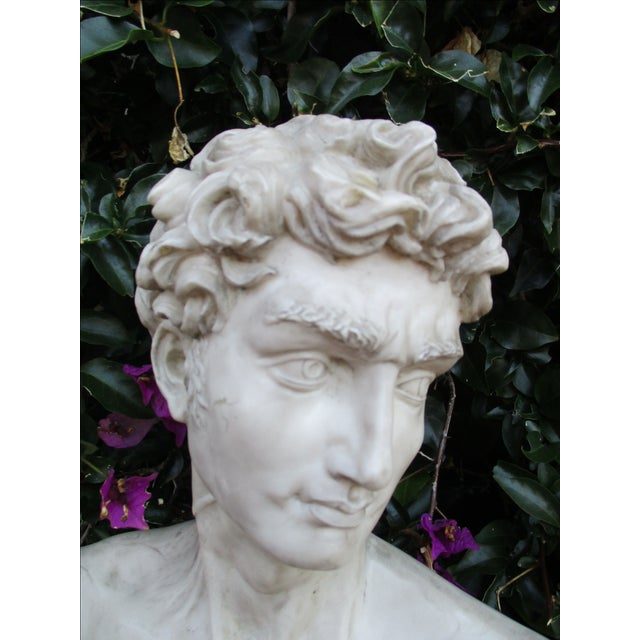 Neoclassical Vintage Cast Resin Bust - Image 10 of 11