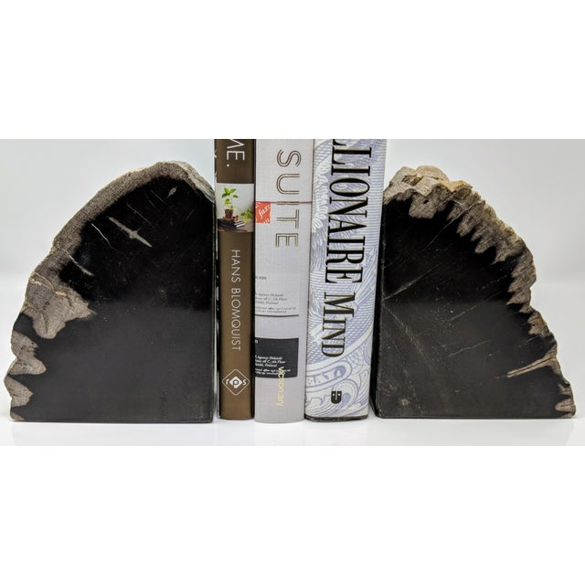 Pair of Petrified Wood Bookends - Image 4 of 13