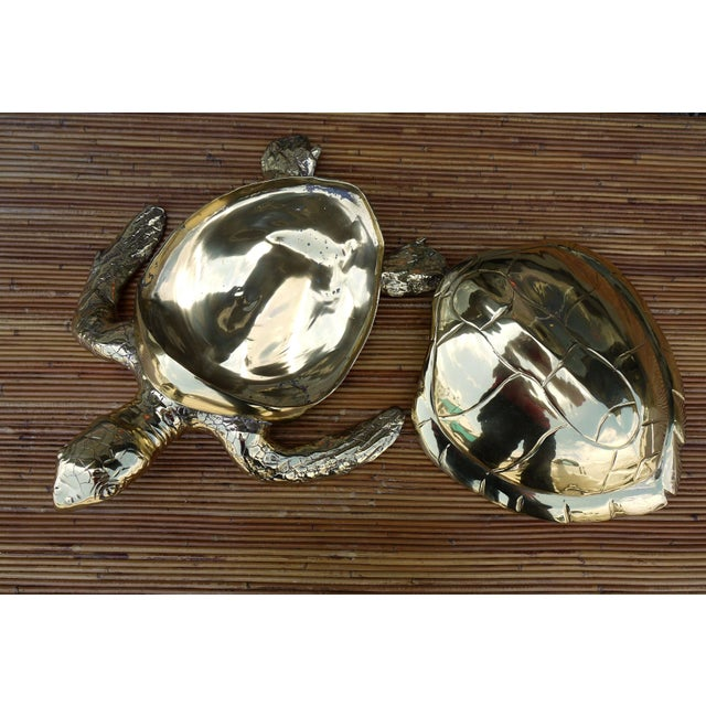 Stunning Large Scale Brass Sea Turtle Box For Sale - Image 4 of 6
