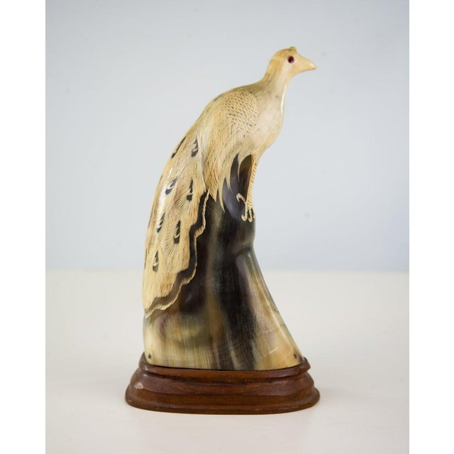 Bone Asian Water Buffalo Horn Peacock Carving For Sale - Image 7 of 7