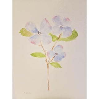 "Christine Frisbee ""Dogwood Three Flowers"" Contemporary Original Botanical Watercolor Painting For Sale"