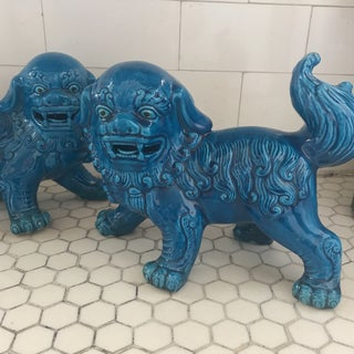 Chinese Turquoise Blue Glazed Porcelain Food Dogs Pair Preview