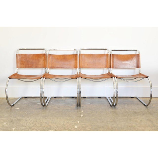 Set of Six cantilever chairs designed by Mies Van Der Rohe in Cognac Leather and Chrome Frame. amazing set of six...