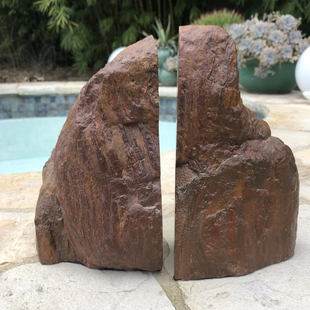 Prehistoric Polished and Natural Petrified Wood Bookends - a Pair For Sale - Image 10 of 13