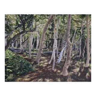 """Garrett Middaugh """"Aspen Grove"""" Oil Painting For Sale"""