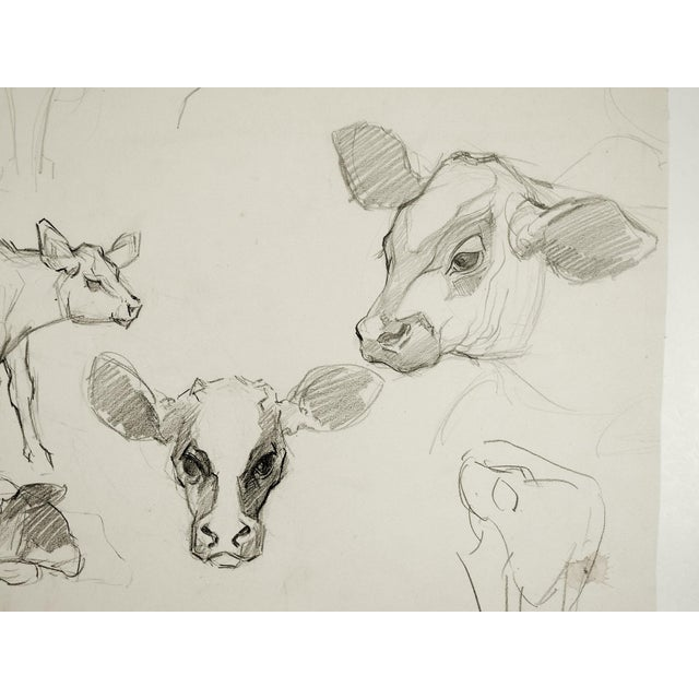 Cottage Pencil Study of Calves For Sale - Image 3 of 5