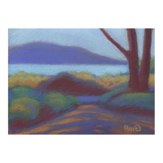 2010s Contemporary Pastel Painting of San Francisco Bay Near the Presidio For Sale