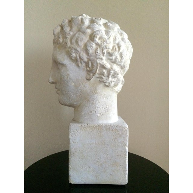 Plaster Lifesize Plaster Bust of Hermes For Sale - Image 7 of 11
