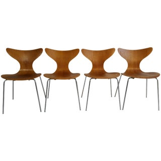 """Rare Oak and Chrome """"Seagull' Chairs Model 3108 by Arne Jacobsen - Set of 4 For Sale"""