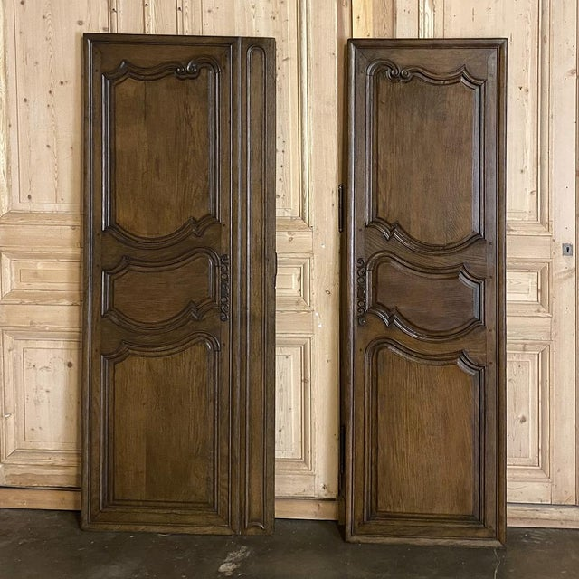 French Provincial Pair Plaquards ~ Armoire or Cabinet Doors, 19th Century For Sale - Image 3 of 12