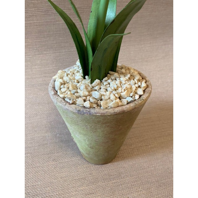 Tommy Mitchell Agapanthus Handmade Tole Potted Plant For Sale - Image 4 of 5