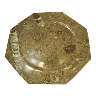 Orthoceras Fossil Octagon Plate For Sale
