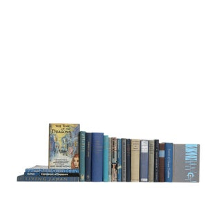 Eastern Culture in Blue & Grey : Set of Nineteen Decorative Books For Sale