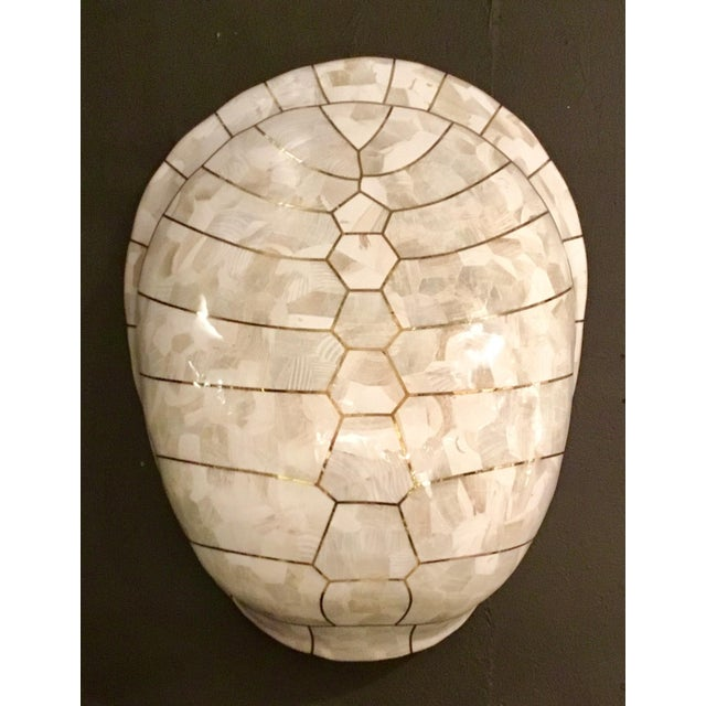 2010s Mainland-Smith Modern White Turtle Shell Wall Sculpture For Sale - Image 5 of 5