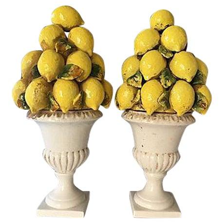 Italian Lemon Topiaries - A Pair For Sale