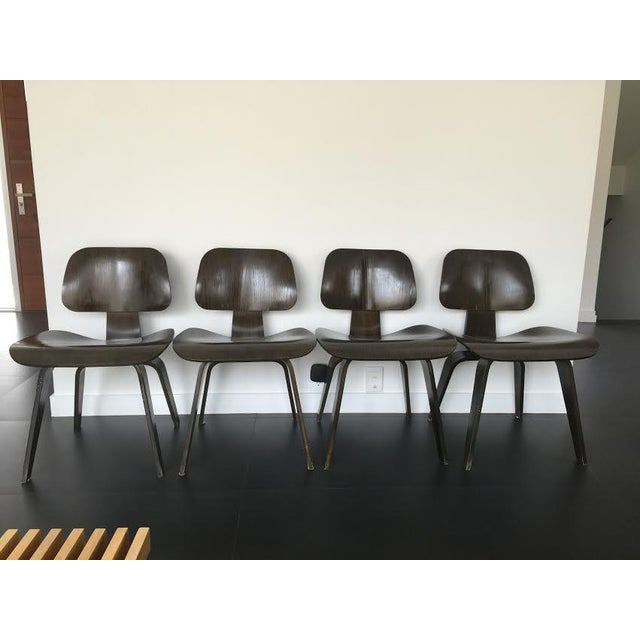 Eames Molded Plywood Dcw Dining Chairs - Set of 4 - Image 2 of 9