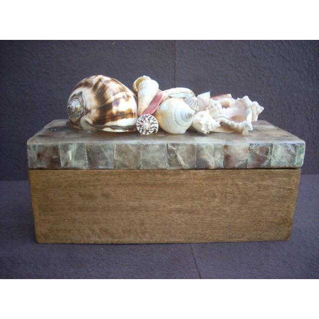 Polished wooden box with mosaic lid made from squares of polished shell; the lid is topped with a collection of perfect...
