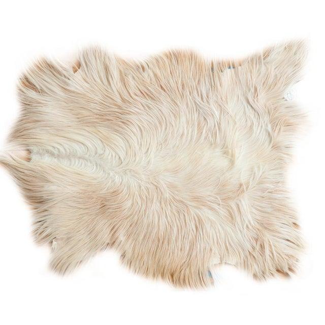 Angora Skin Rug - 2′6″ × 3′3″ - Image 1 of 5