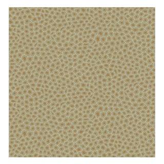 Cole & Son Senzo Spot Wallpaper Roll - Olive For Sale