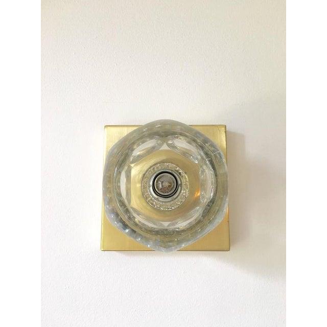 Sciolari Glass & Brass Sconce - Image 9 of 10