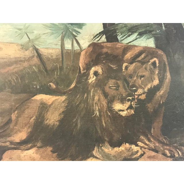 English Antique British Colonial Lion Lioness Jungle African Oil Painting on Board For Sale - Image 3 of 11