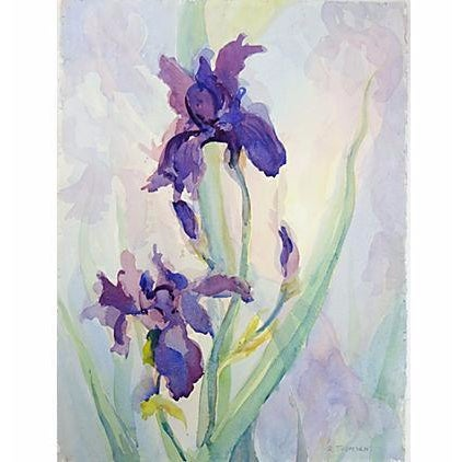 Irises by Richard Thomsen For Sale