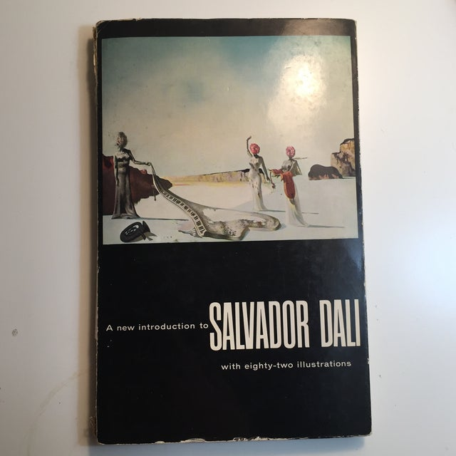 """A New Introduction to Salvador Dali"" 1960 Book - Image 10 of 10"