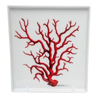 Fabienne Jouvin, Paris Coral Motif Porcelain Plate on Stand For Sale