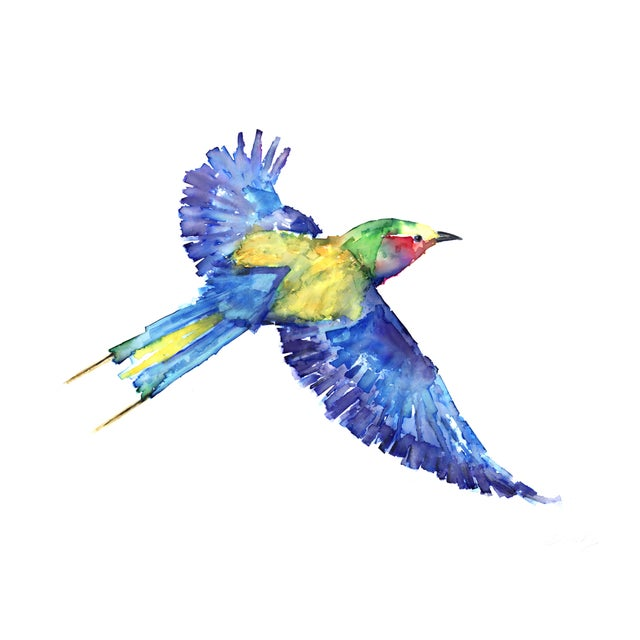 Boho Chic Natasha Mistry Lilac-Breasted Roller Fine Art Print For Sale - Image 3 of 7