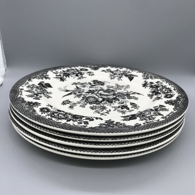 Royal Stafford Asiatic Pheasant Black Chop Plates - Set of 5 For Sale - Image 13 of 13